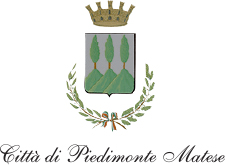 logo_pied